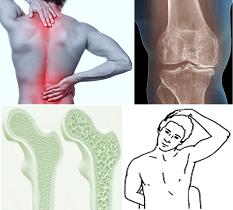 Bone Muscle Joint Pain